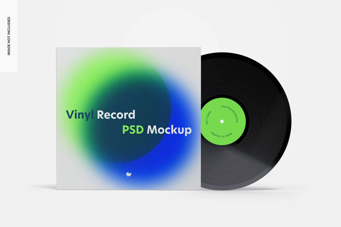 乙烯基唱片模型 正视图
