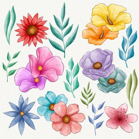 手绘漂亮的花套装